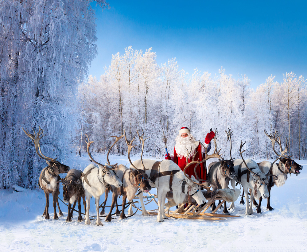 Santa and reindeer Lapland